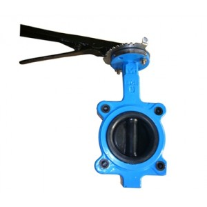 Rubber coated disc lug butterfly valve