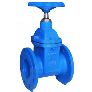 Resilient seat no rising stem gate valve