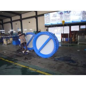 big size dual plate check valve