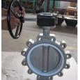 ss304 body PTFE seat lug butterfly valve