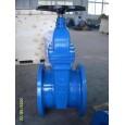 ANSI non-rising gate valve
